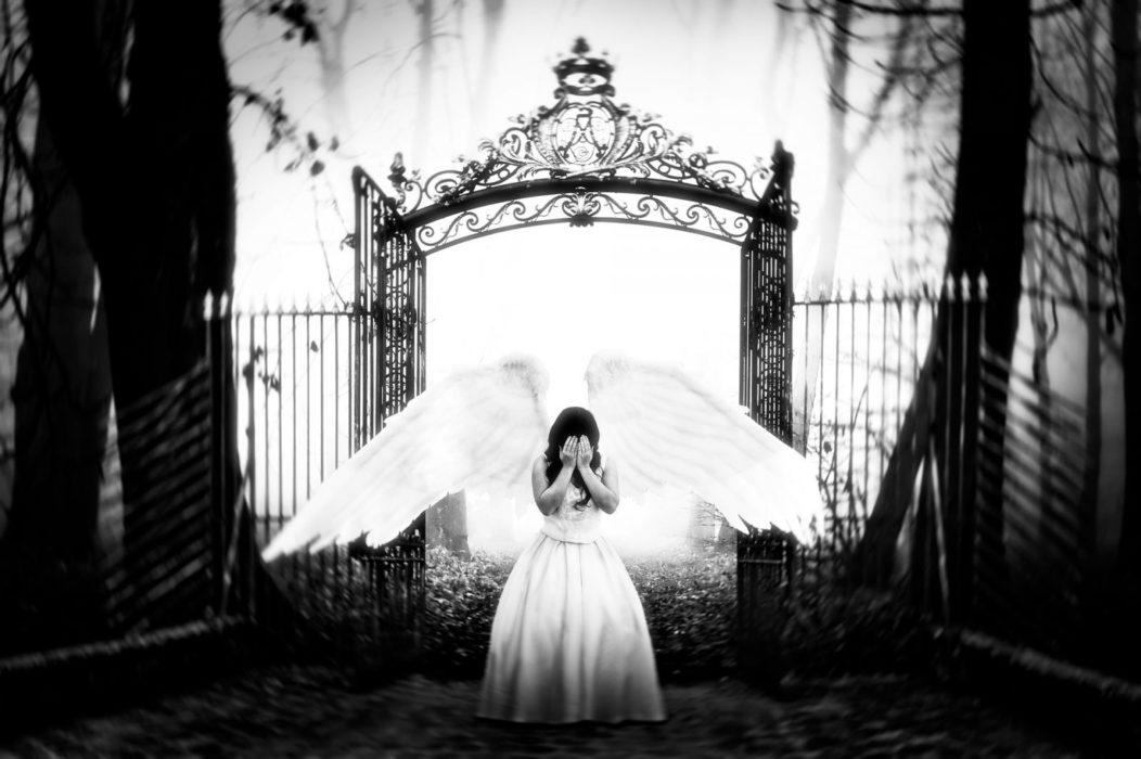 כנפיים בחלום תקשור