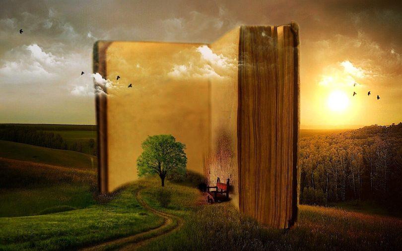 חלום על ספר